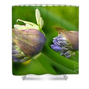 Montana Blue Shower Curtain