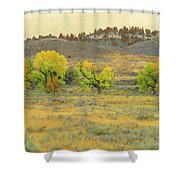 Montana Cottonwood Reverie Shower Curtain by Cris Fulton