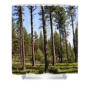 Montana Country  Shower Curtain