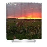 Montana Hayfield Sunset Shower Curtain