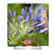 Montana Purple And Blue Shower Curtain