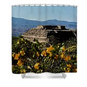 Monte Alban 4 Shower Curtain