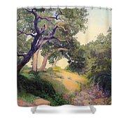 Montecito Dry River Oaks Shower Curtain