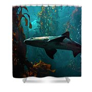 Monterey Depths Shower Curtain
