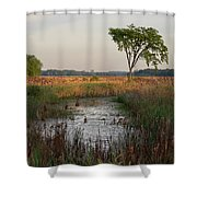 Montezuma Morning Shower Curtain