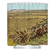Montezuma Rd-borrego Occitillo Wells View Shower Curtain