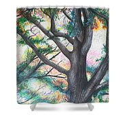 Monticello Tree Shower Curtain