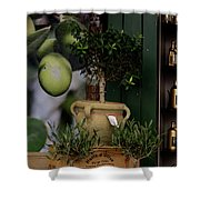 Montmarte Paris Olive Oil Shower Curtain