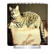 Monty's Pose Shower Curtain