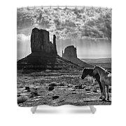 Monument Valley Horses Shower Curtain