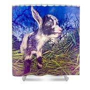Moo Cow Love Grass Shower Curtain