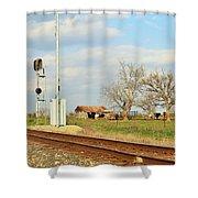 Moo Moo Train Track Shower Curtain