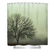 Moody Morning Shower Curtain