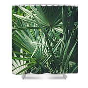 Moody Tropical Leaves Shower Curtain