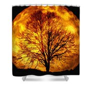 Moon - Id 16236-105015-0839 Shower Curtain
