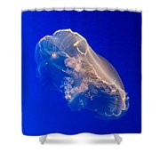 Moon Jelly Series #2 Shower Curtain