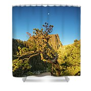 Moon Over Dreams Shower Curtain