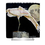 Moon Over Mississippi A Snowy Egrets Perspective Shower Curtain