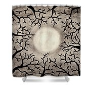 Moon Over Trees Shower Curtain