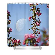 Moon Through The Crabapple Blossoms Shower Curtain