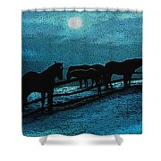 Moonbeam Shower Curtain
