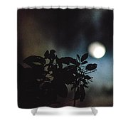 Moonlight And Tree 2 Shower Curtain