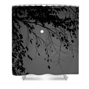 Moonlight - B And W Shower Curtain