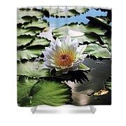 Moonlight Lily  Shower Curtain