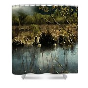 Moonlight On Canadian Lake Shower Curtain