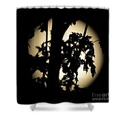 Moonlit Leaves No 1 Shower Curtain