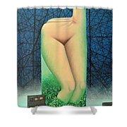 Moonlit Night- A Shower Curtain