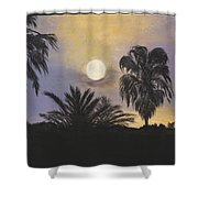 Moonlit Palms In Tampa Shower Curtain