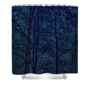 Moonshine 12 Blue Sky Shower Curtain