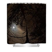 Moonshine 13 Fishy Shower Curtain