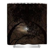 Moonshine 14 The Trees Shower Curtain