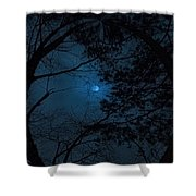 Moonshine 16 The Trees Shower Curtain