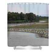Moor Shower Curtain