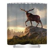 Moose At Dawn Shower Curtain