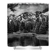 Moose At Schwabacher's Landing Shower Curtain by Gary Lengyel