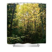Moose Country Shower Curtain