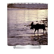 Moose Crossing Shower Curtain