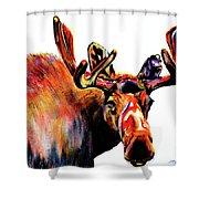 Moose In Orange Shower Curtain
