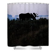 Moose In Silhouette Shower Curtain
