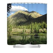 Moose In The Elk Creek Beaver Ponds Shower Curtain