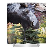 Moose In Vail Shower Curtain