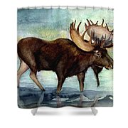 Moose Reflections Shower Curtain