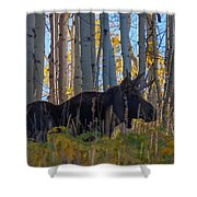 Moosey Shower Curtain