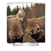 Moosy Moment Shower Curtain