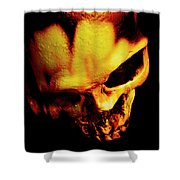 Morbid Decaying Skull Shower Curtain