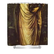 Morgan Le Fay 1862 Shower Curtain
